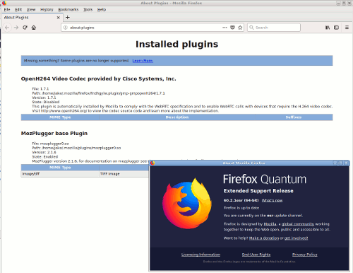 Binary Patching: Attempting to Restore NPAPI Support to Firefox 60 ESR