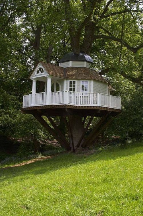 Best Tree House Plans Julia Mystra Medium