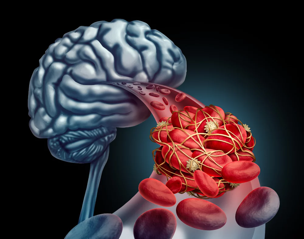 Your blood changes your brain: new insights on how blood