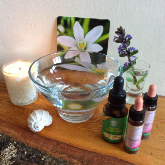 A glass bowl filled with water, surrounded by essences, a shell, a lit candle, a flower card, and a sprig of blue flowers
