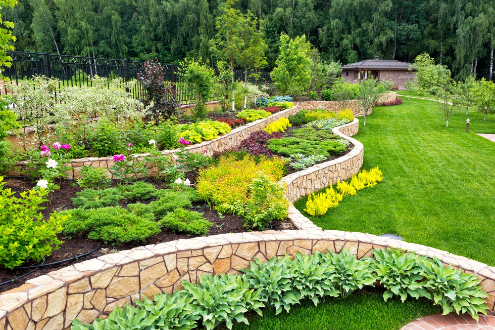 The Difference Between Xeriscape And Zeroscape By Mellco Landscaping Medium