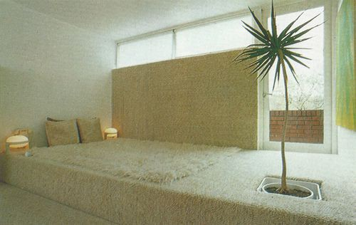 White interior, featuring a white simple floor bed and one small palm tree in front of it.