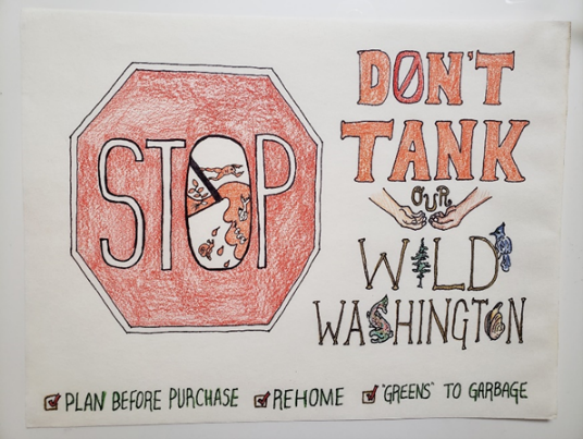 """Drawing that says """"Stop Don't tank our Wild Washington"""""""