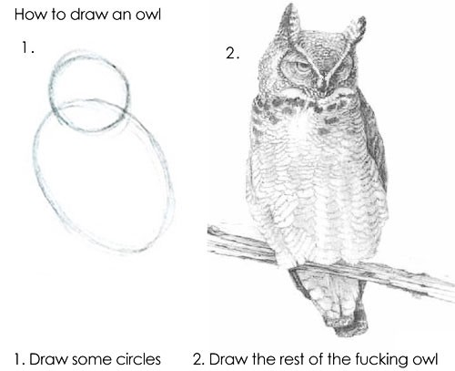 An exaggeratedly simplified 2 step process for drawing an owl