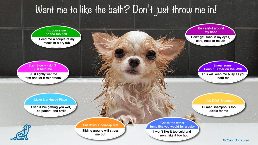 Do You Want Me To Like The Bath Don T Just Throw Me In