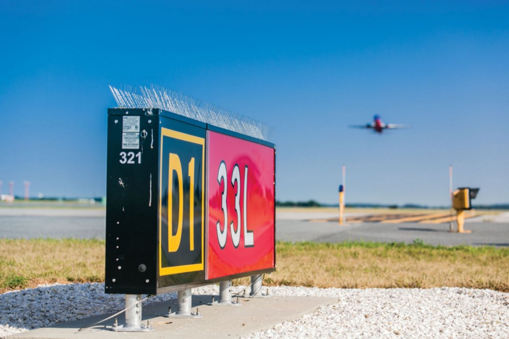 Photo of airport sign with bird spikes.