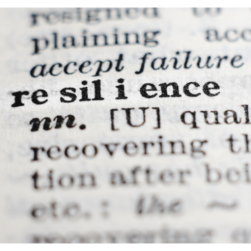 Resilience, a snapshot of a dictionary definition.