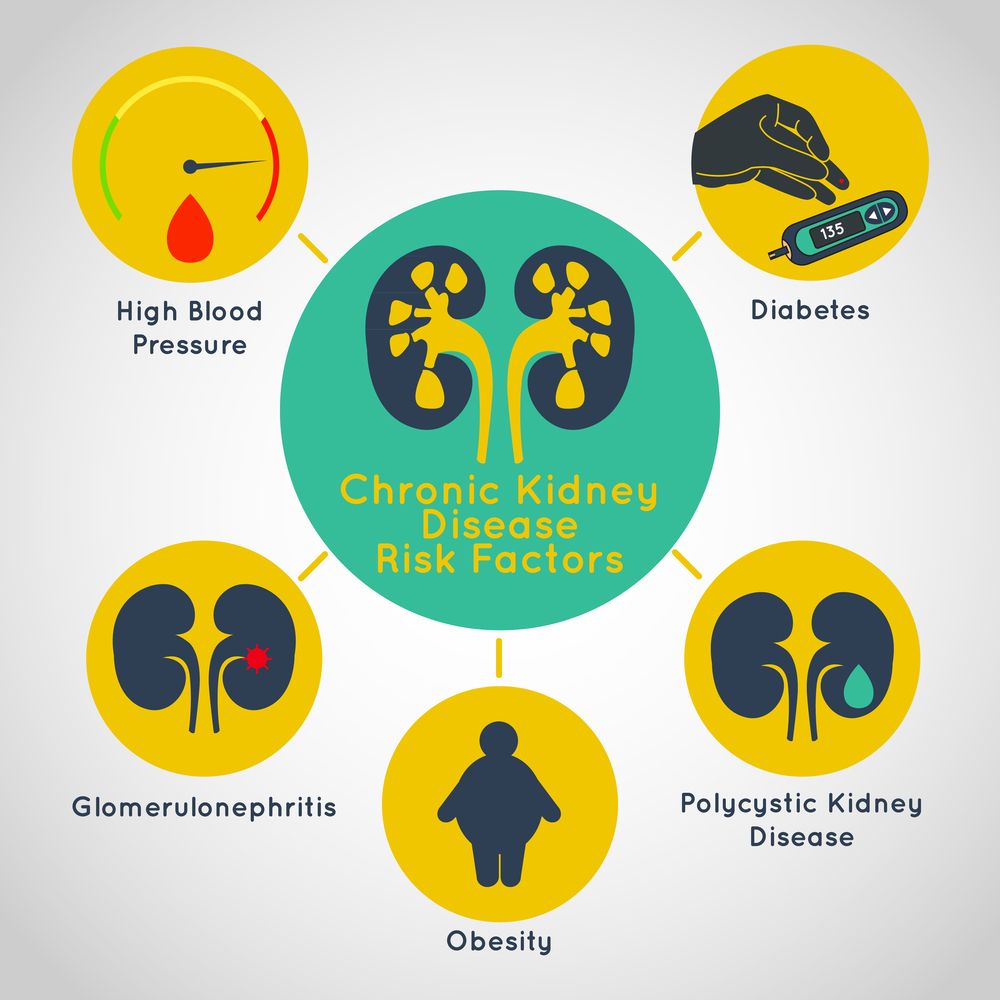 Chronic Kidney Disease And Symtoms By Kidney Care Medium