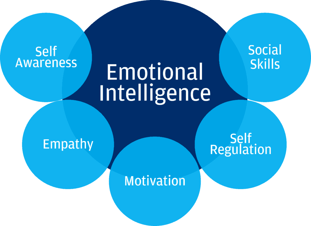Emotional Intelligence: The Importance of a High EQ
