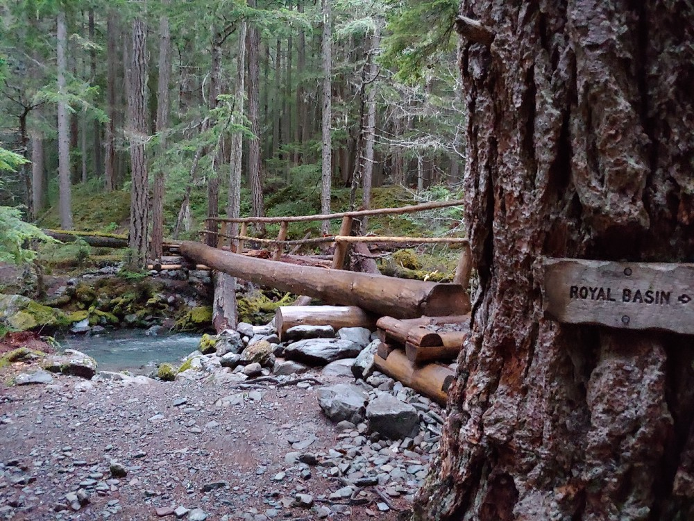 A bridge made from a large log spans Royal Creek in Olympic National Forest.