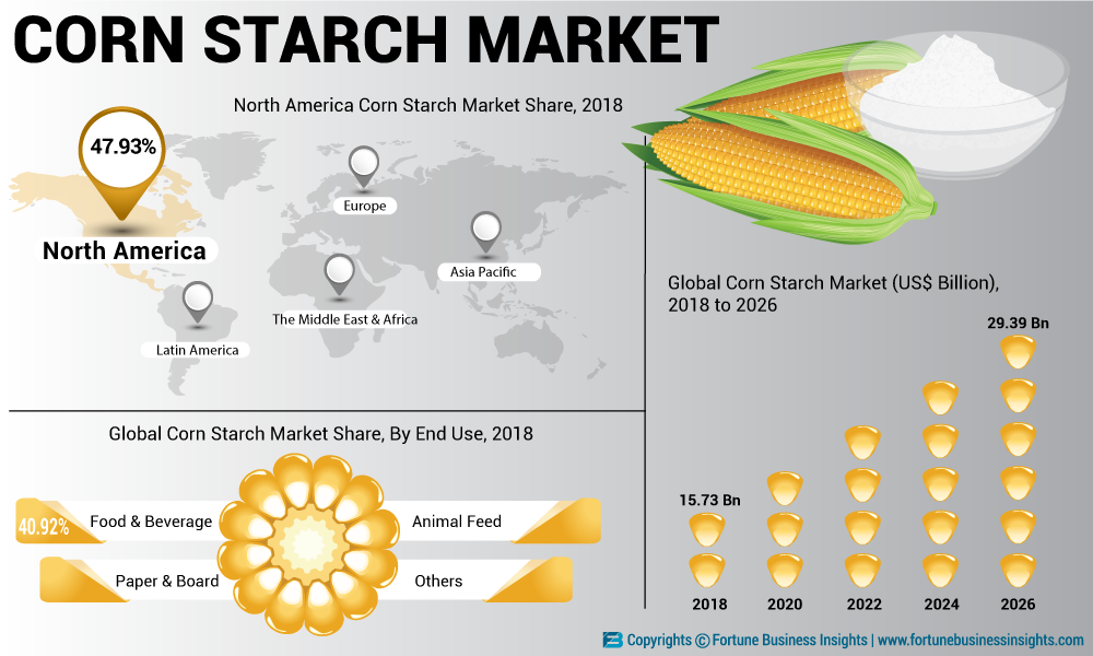 Image result for Global Starch Market