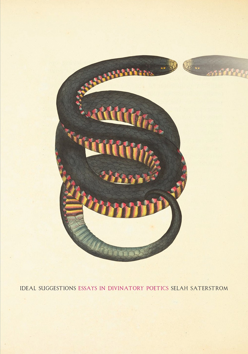 REVIEW: Ideal Suggestions: Essays in Divinatory Poetics by