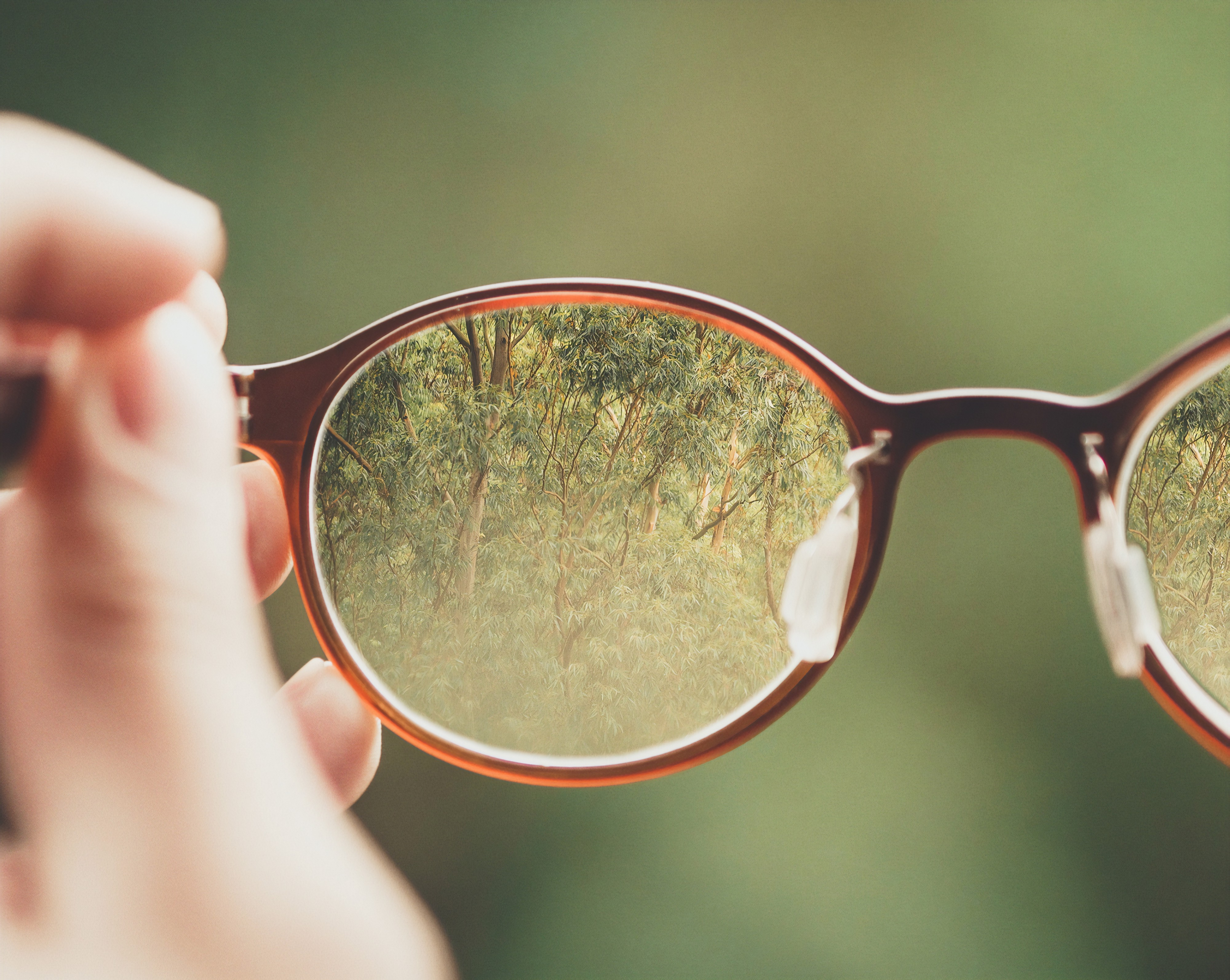 Close-up of white person holding reading glasses with brown rims. Through the glasses a forest is seen.