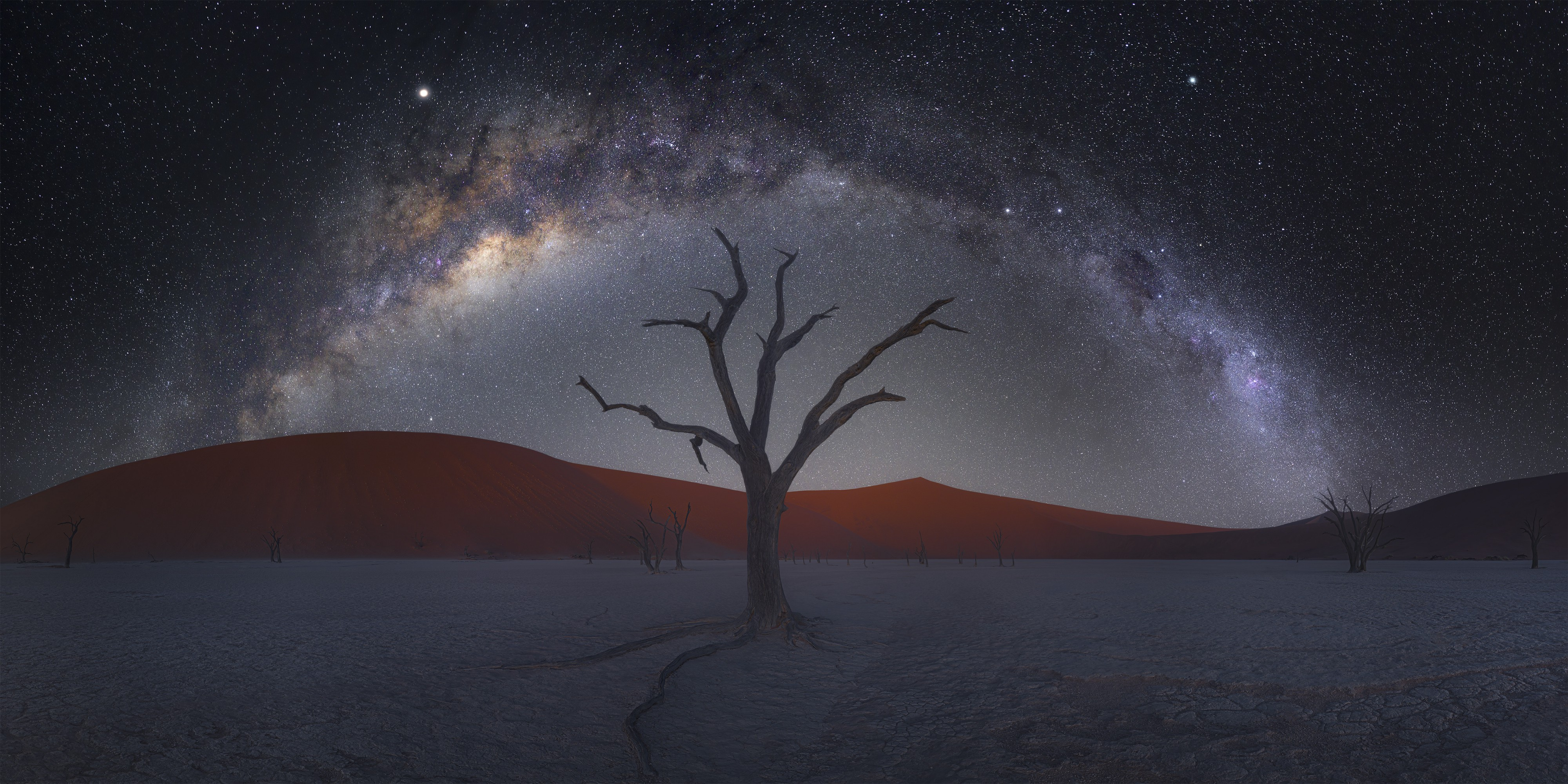 A fine art photograph of a bare tree on a desert landscape, crowned by a sky full of stars