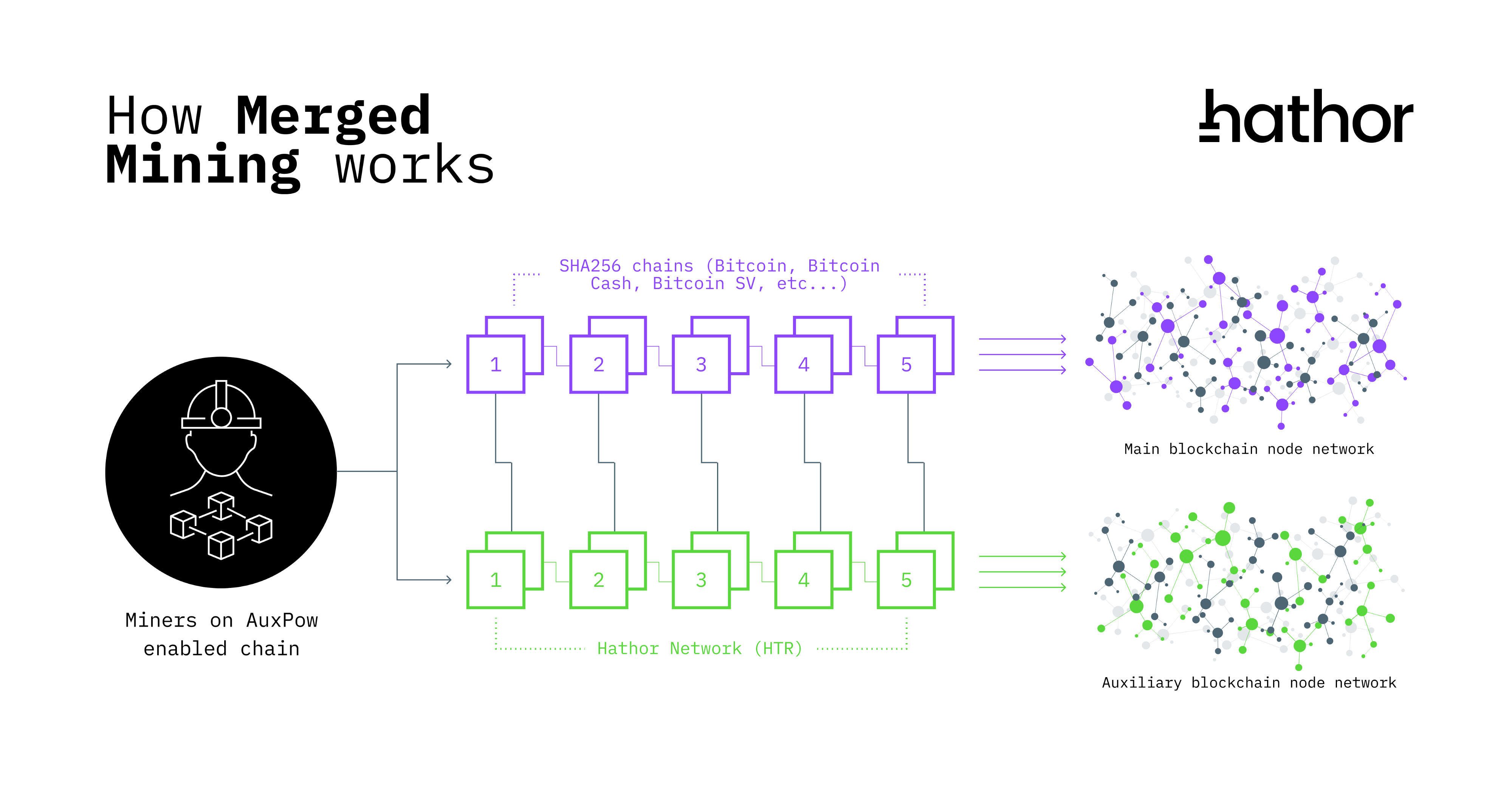 Infographic explaining how Merged Mining works: SHA256 miners (such as Bitcoin, Bitcoin Cash, Bitcoin SV, etc…) can secure blocks on separate chains and claim rewards on both