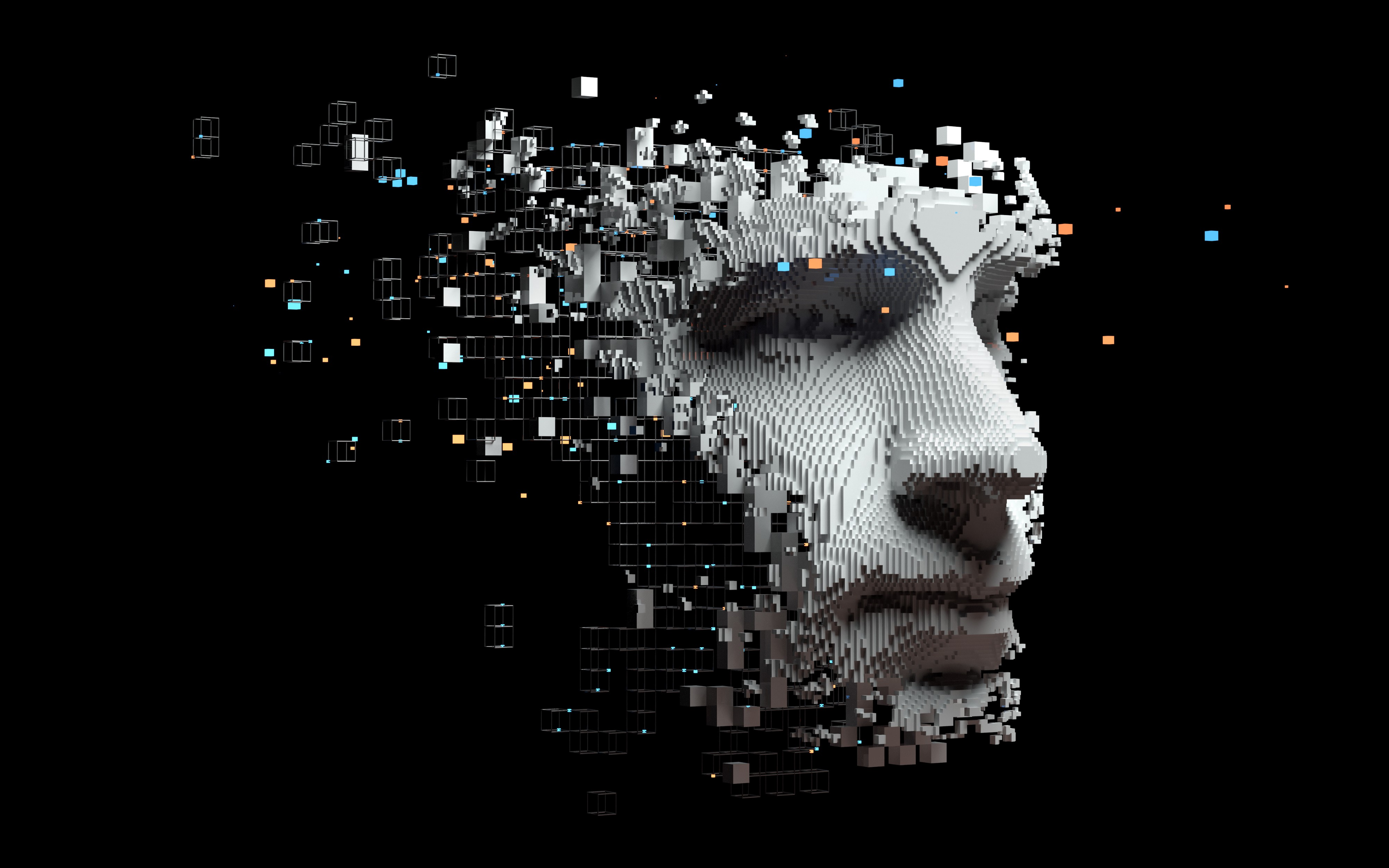 Digital image of a face and partial construction of brain using digital cubes.