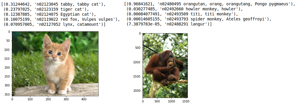 VERY QUICK SETUP of CaffeNet (AlexNet) for Image