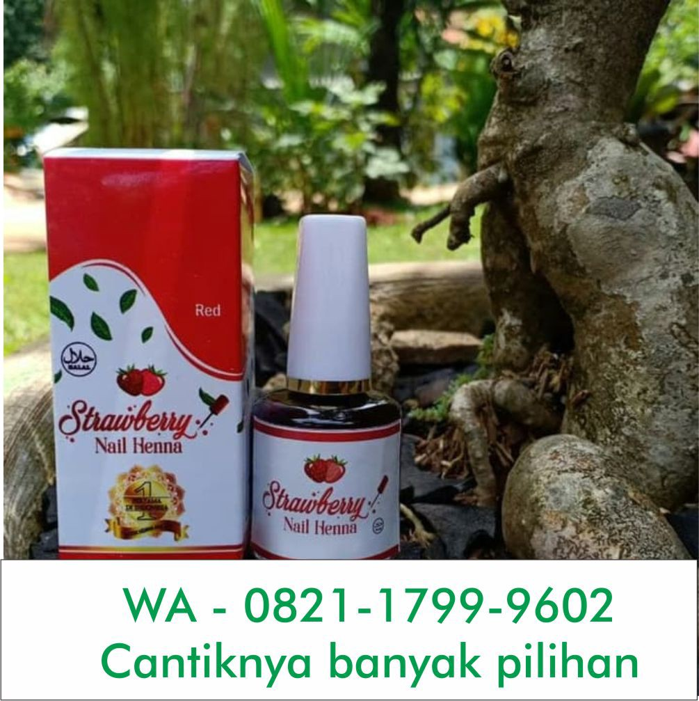 Wa 0821 1799 9602 Murah Wa 0821 1799 9602 Owner Henna Anak Simple Tasikmalaya By Henna Medium