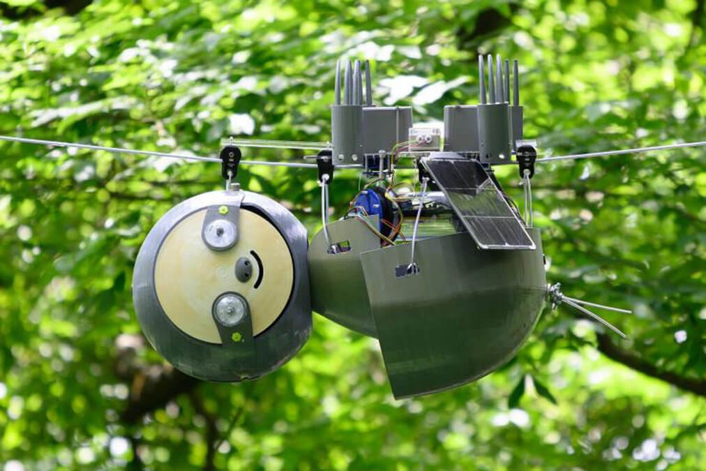 This robotic sloth is (slowly) monitoring endangered species