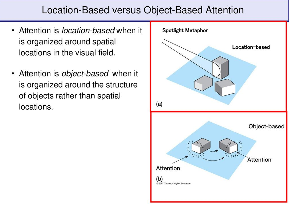 Can Neural Networks Develop Attention? Google Thinks they Can