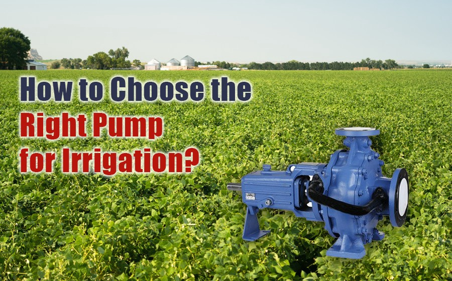 A Step-by-step Guide to Choosing the Right Irrigation Pump for your