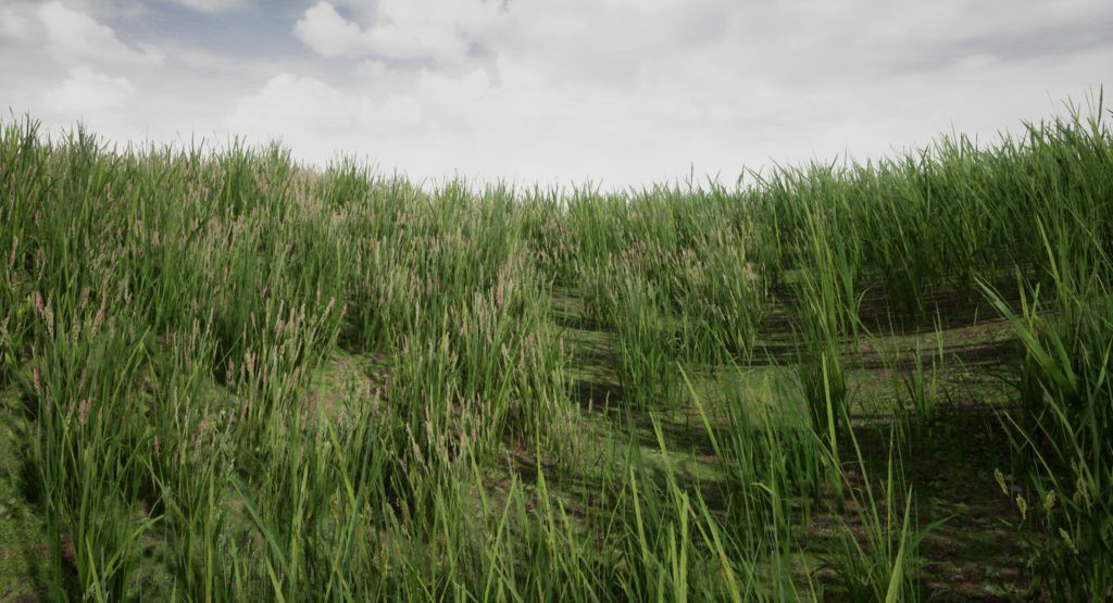 Preparing Realistic Grass in UE4 - 80Level - Medium