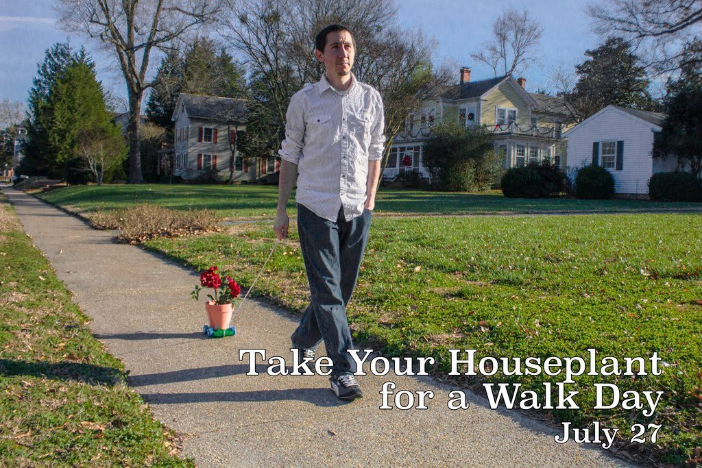July 27] Take Your Houseplants for a Walk Day! | by THE FACT SITE | Medium