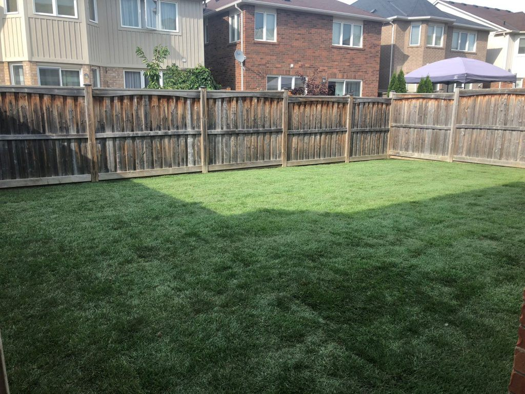 How To Prepare Your Lawn For New Sod Grass Installation