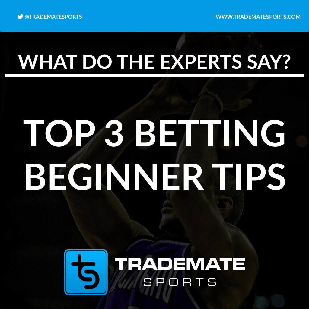 Betting experts dover downs sports betting cards