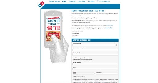 Web Form Example by Dominos