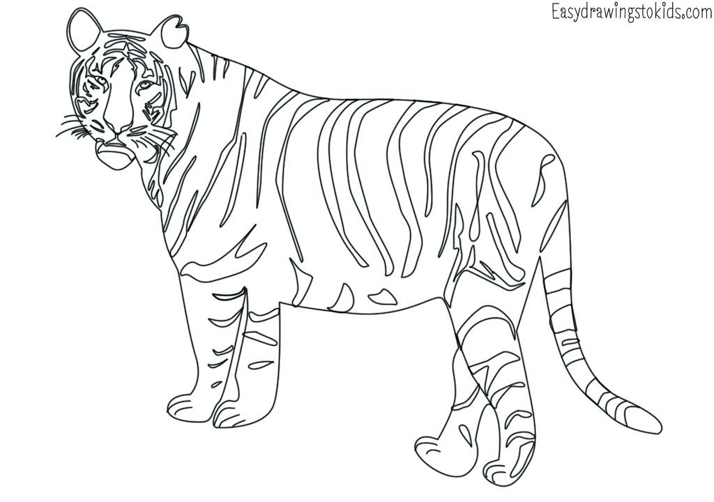 Top 29 Wild Animals Coloring Pages With Name ( Wild Animals Drawings) By  Artist Mind Medium