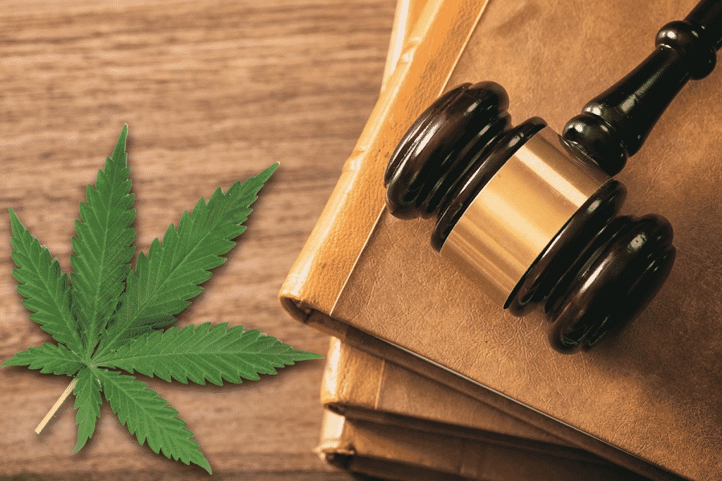 CBD Laws Florida