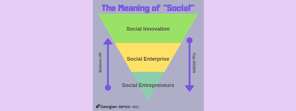 The Meaning Of Social Social Entrepreneurs Social