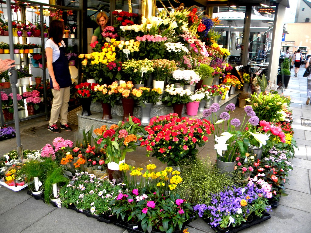 How To Choose Best Flowers From Florist Shop And Send It To
