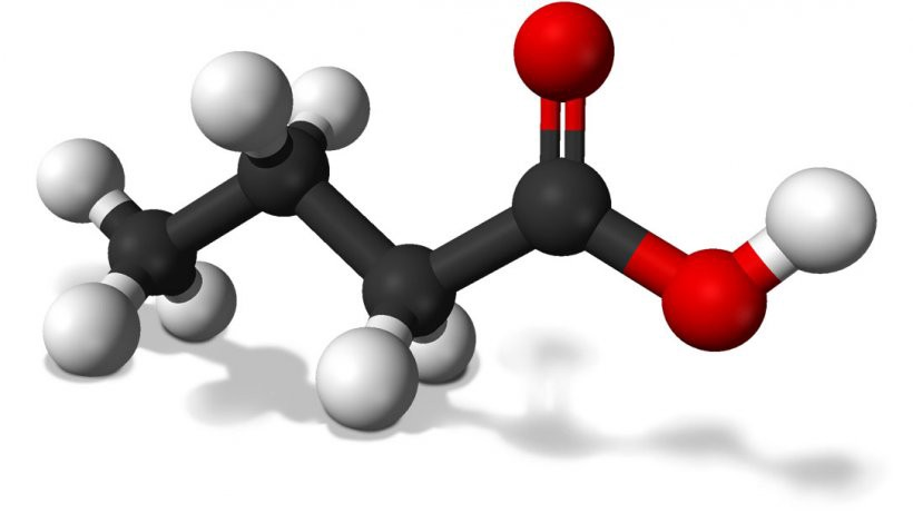 Now, what is a fatty acid?
