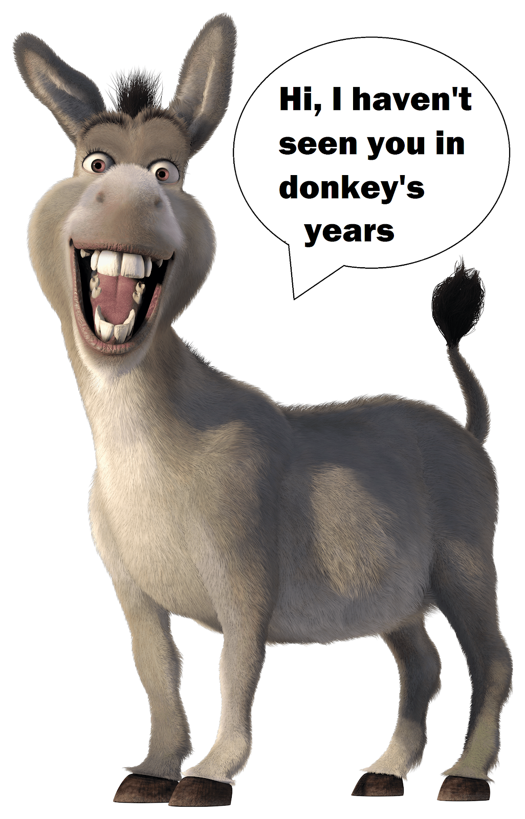 Idioms You Haven T Used In Donkey S Years Smriti Marathe