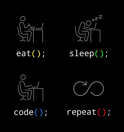 Coding bootcamp: how does the daily routine look like?