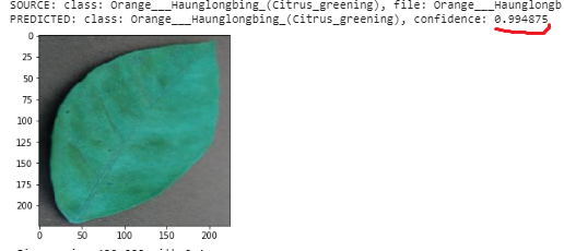 Plant Disease Classification with TensorFlow Lite on Android