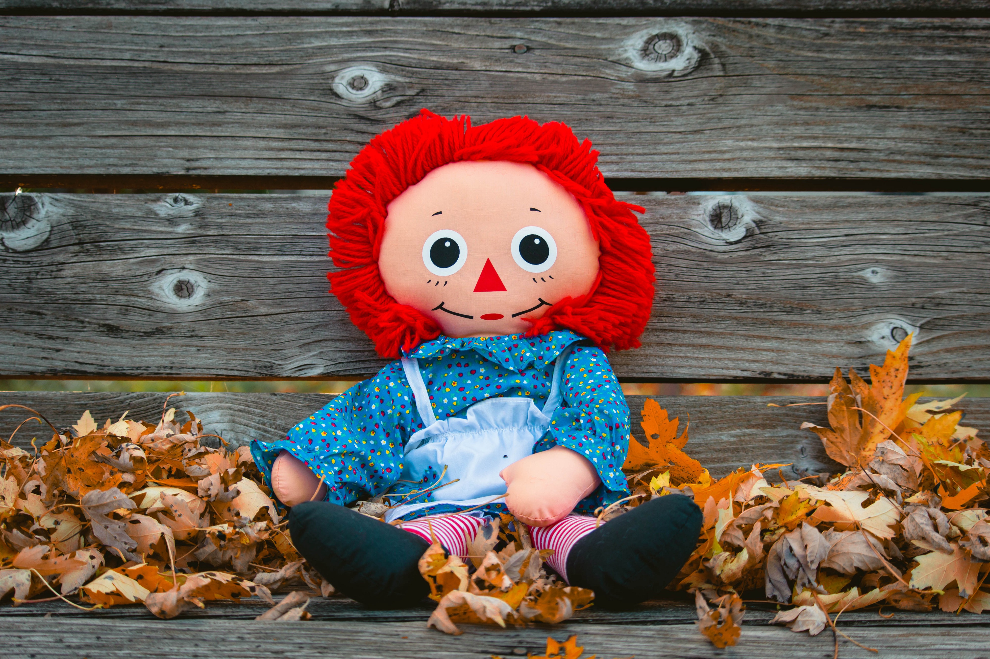 A Raggedy Ann doll. We have no way of knowing it's not haunted.