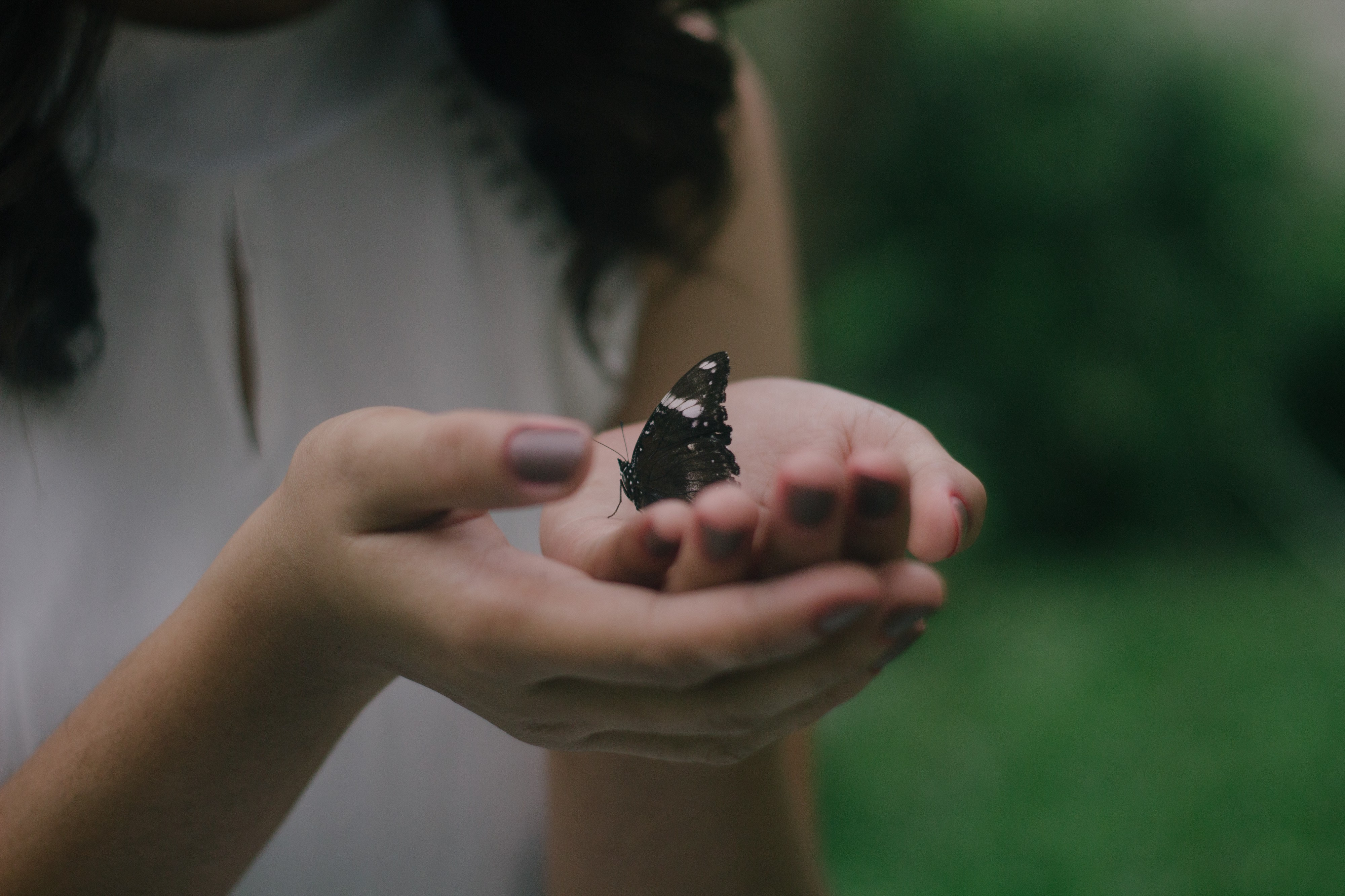 How to Transform Your Life — Breaking the Habit of Being