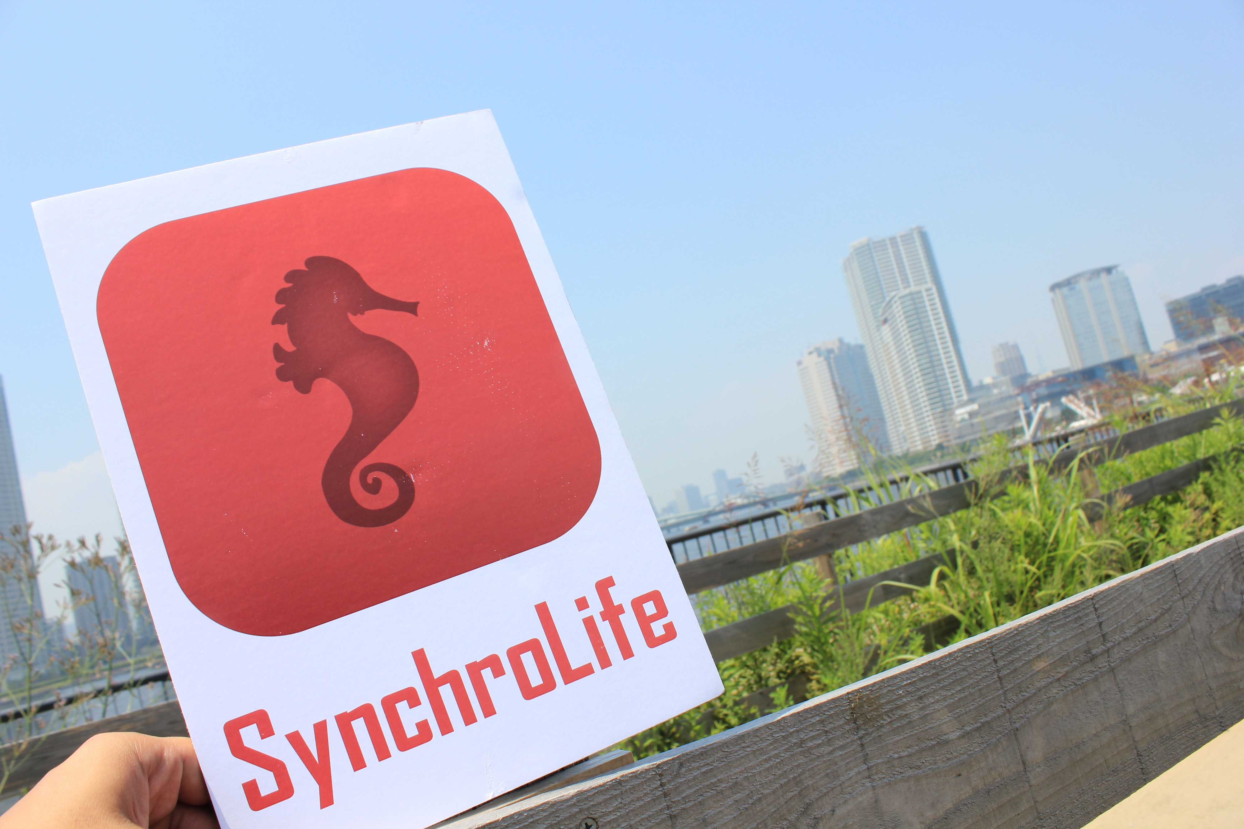 Behind The Scenes The Meaning Of Synchrolife And Our Seahorse Icon By Synchrocoin Synchrolife Medium