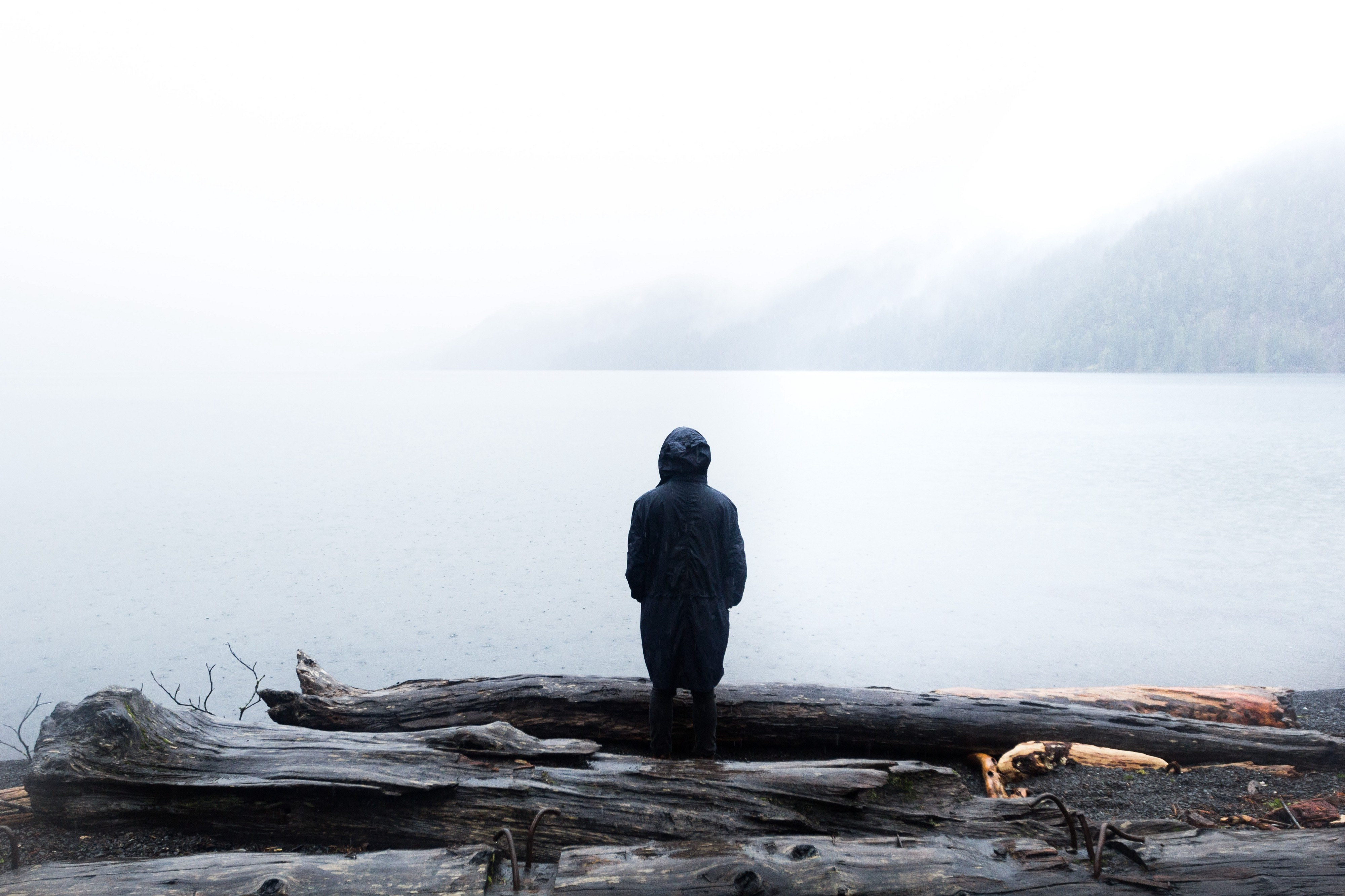 16 Quotes That Will Help You Pass Through the Struggle of