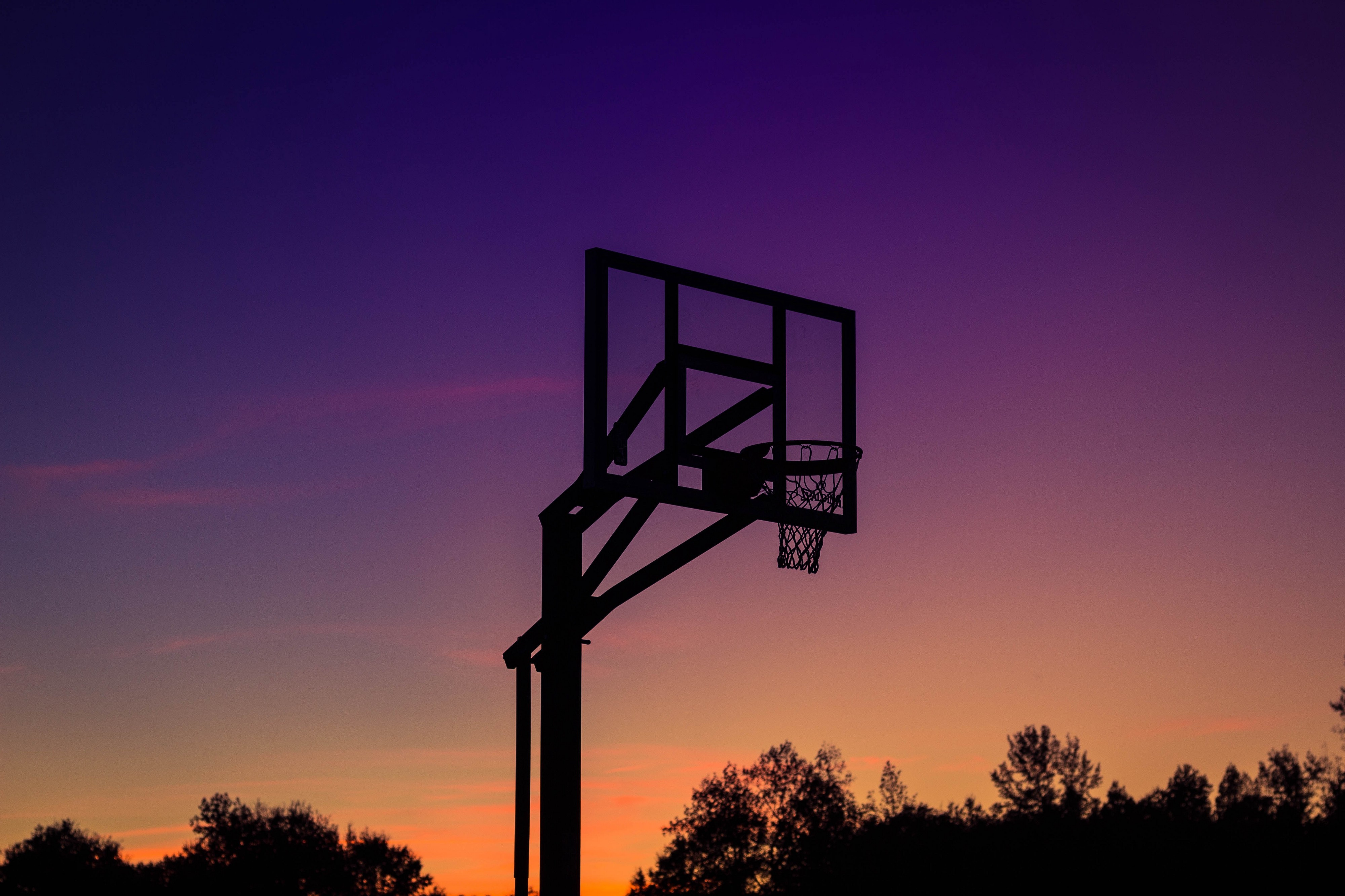 Cannabis and Basketball: The Truth - Noteworthy - The