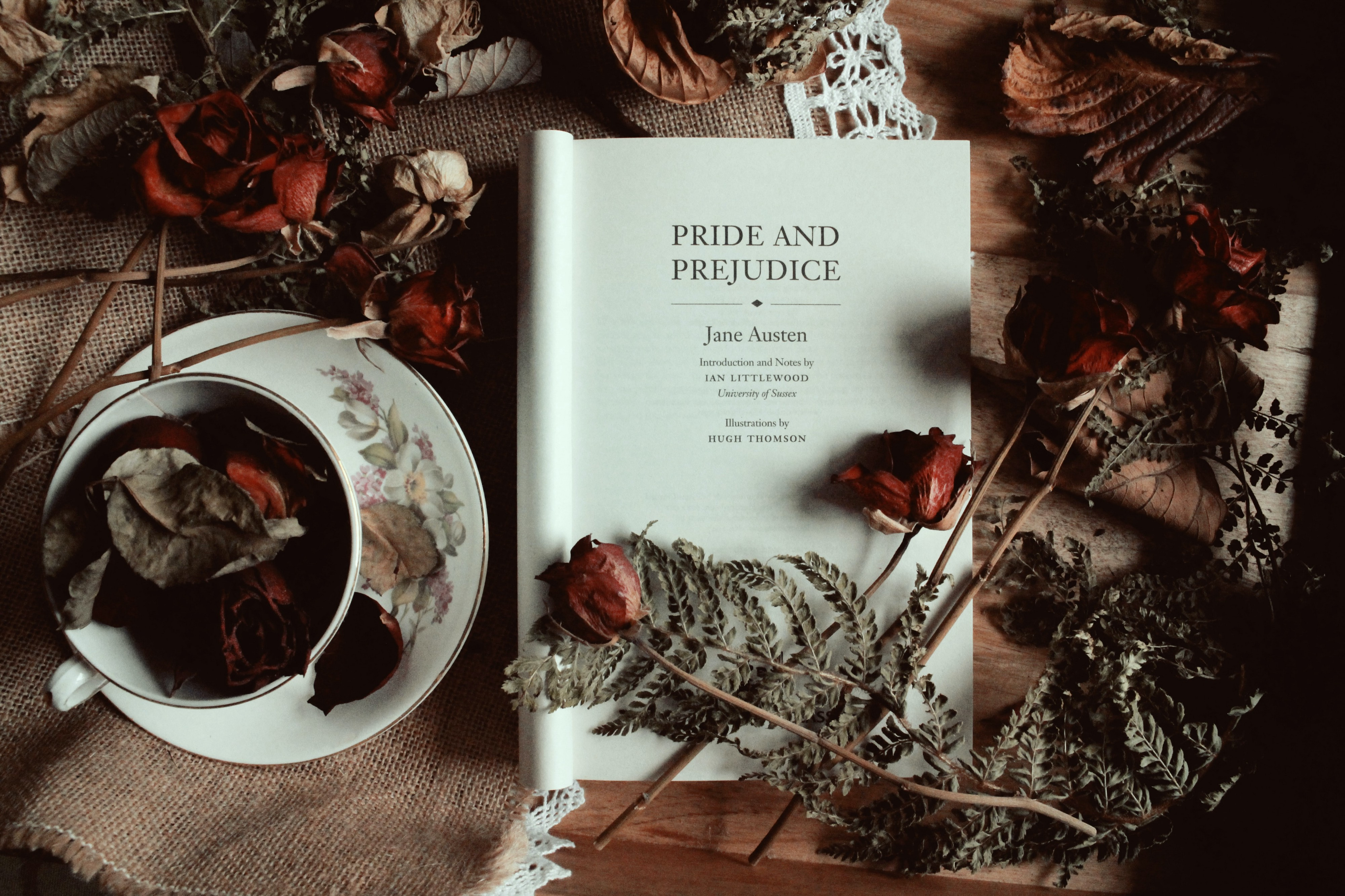 Pride and Prejudice. What I learned from Jane Austen's… | by Lena Ovechkin  | Medium