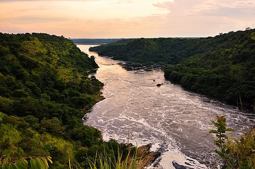 The Nile in Uganda.