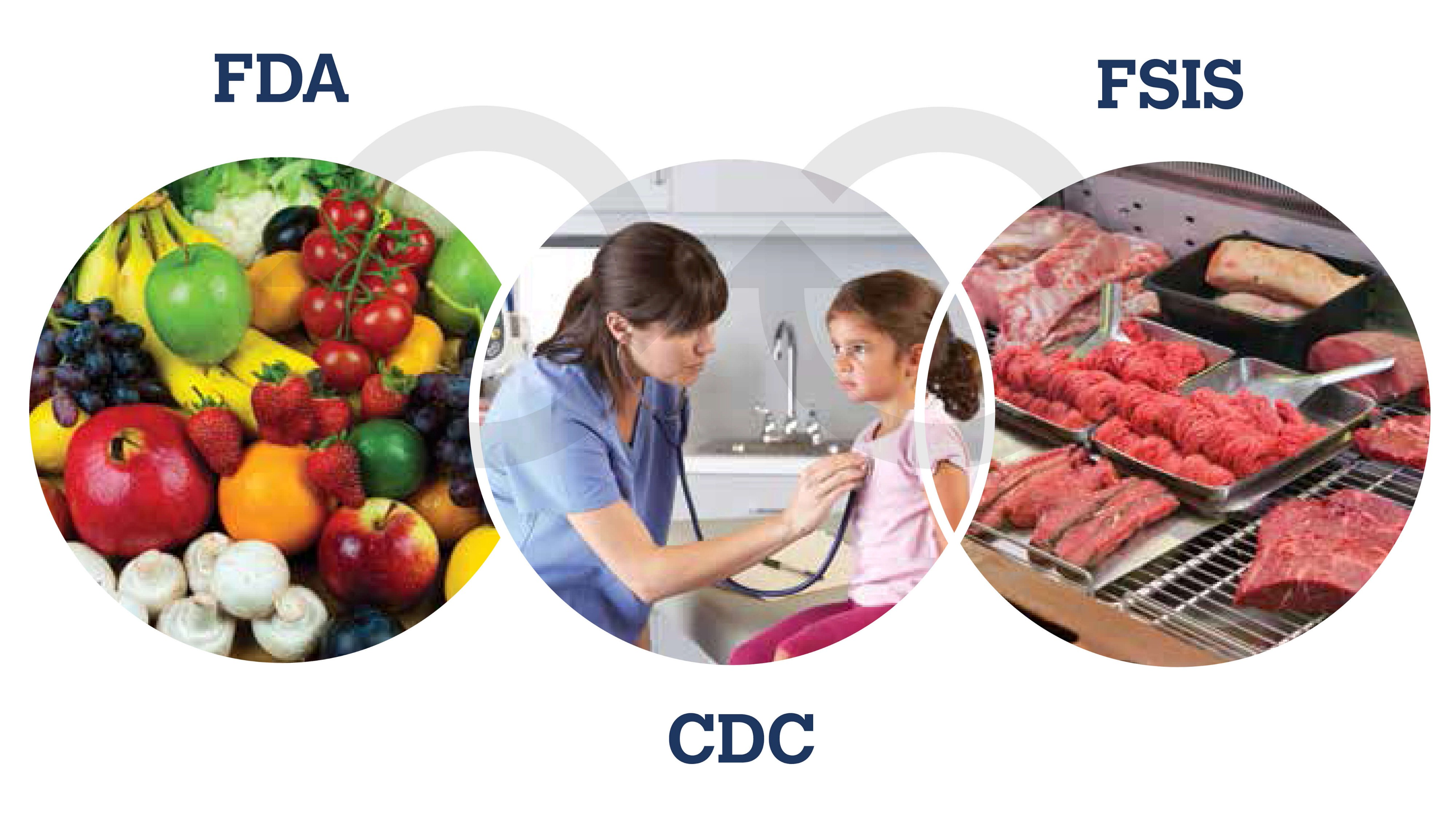 Safer Food and Greater Consumer Confidence - USDA Results