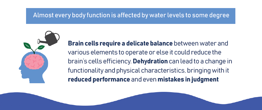 almost every body function is affected water levels to some degree
