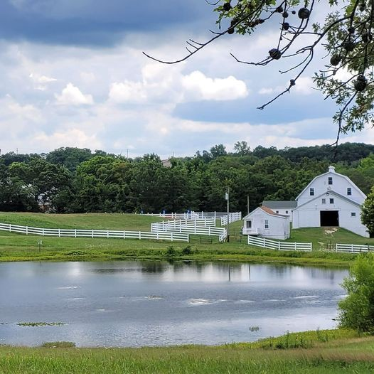 Hilsboro, MO (Pond in foreground, Barn in background)