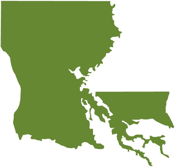 ID: against a white background, green forms the actual shape of Louisiana with significant water erosion compared to what is commonly used on maps to represent Louisiana.