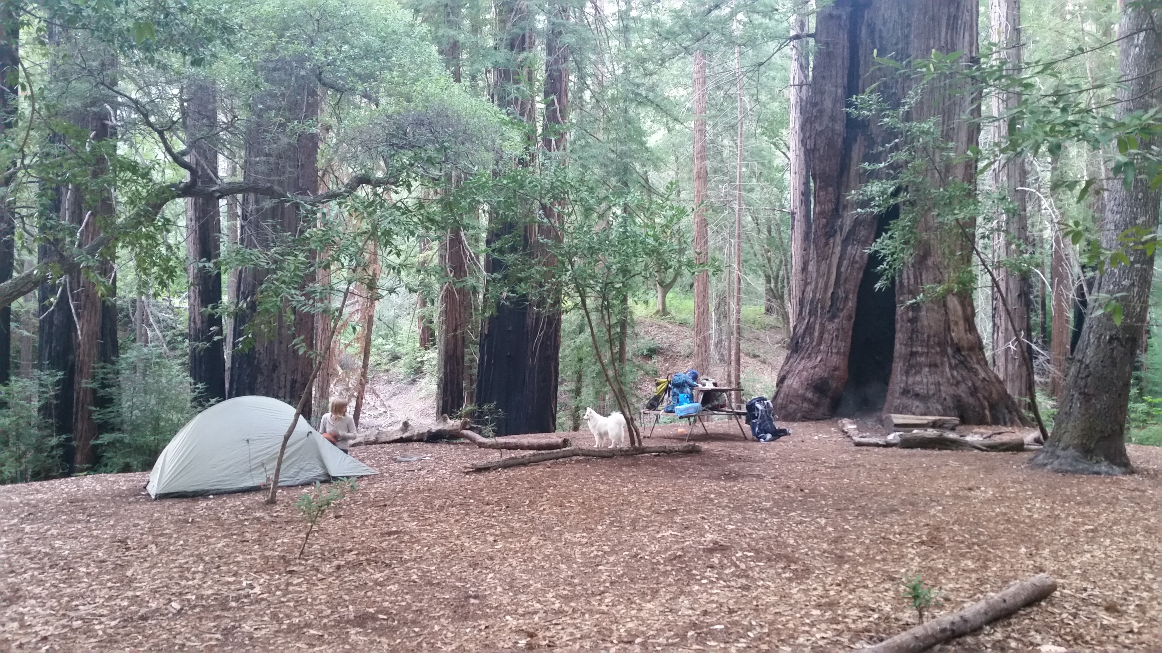 Vicente Flats — Big Sur Backpacking - Amy K - Medium